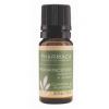 Pharmaca Essential Oil of Frankincense in Jojoba 10ml